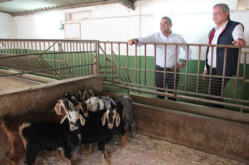 Las Escuelas De Capacitación Agraria De Canarias Ofertan 290